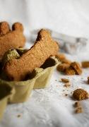 Ένα μπισκοτάκι για την ημέρα των ζώων! - a cookie for world animal day!