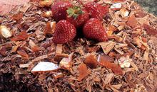Τούρτα με καρύδια, σοκολάτα και φρούτα