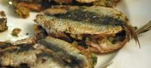 Σαρδέλες ψάρι τηγανιτές και γεμιστές με τυρί και φρυγανιά