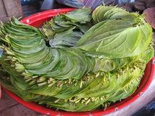 Ινδοκάρυδο – betel (paan)