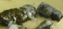 Ντολμαδάκια γιαλαντζί με αυγολέμονο