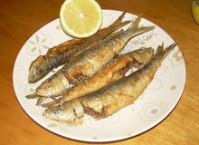 """Ψάρια τηγανητά Λυχναράκια : καλιτσούνια """"της στιγμής"""" Οι βραστές μας σαλάτες Κρητικό πιλάφι To blog or not to blog ? Φακές σούπα Γλυκό πορτοκάλι"""