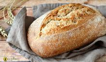 Ζύμη γιά Ψωμί