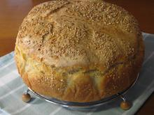 Ψωμί με υγρό προζύμι