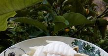 Τσιπούρες με Σελινόριζα Φρικασέ