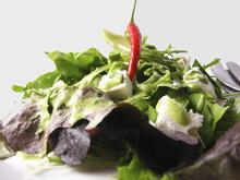 Fresh green salad with feta cheese and lime dressing/ Φρέσκια πράσινη σαλάτα με σάλτσα φέτας και λάιμ