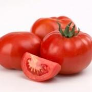 Βιολογική ντομάτα  κόκκινος θησαυρός