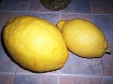 Λέμόνι γλυκό