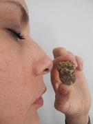 Αβγουλάκι ψημένο σε bain-marie με άσπρη τρούφα