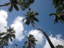 Saint lucia, a beautiful island in the caribbean sea!
