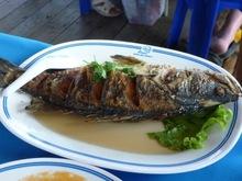 Thai - λανδέζικο ψάρι τηγανιτό με σουσάμι