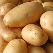 Ποτηρακια γεματα με πικαντικες πατατες!!!
