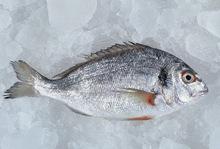 Ψάρι στη λαδόκολλα με πορτοκάλι