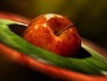 Γεμιστά μήλα